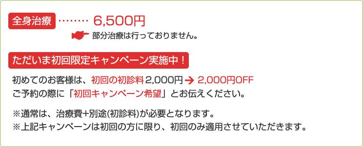 全身治療/6,500円